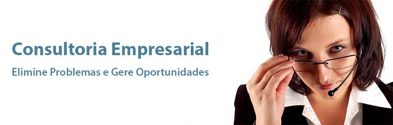 consultora_online